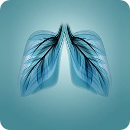 Serviços de Prevenção Vias Respiratórias - Apoteca Natura